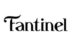 Logo Fantinel